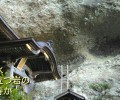 45番札所岩屋寺