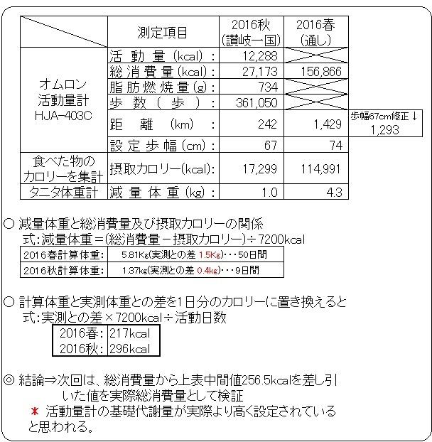 %e6%b4%bb%e5%8b%95%e9%87%8f%e8%a8%88%e3%81%ae%e6%a4%9c%e8%a8%bc