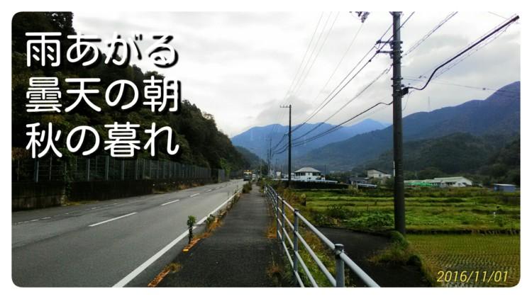 20161114_110742-1